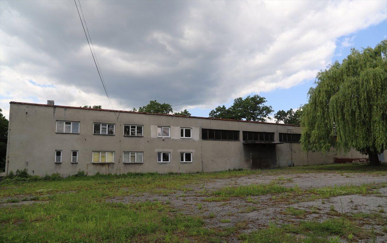 Lokal użytkowy na wynajem Brzączowice, 1  931m2 Foto 9