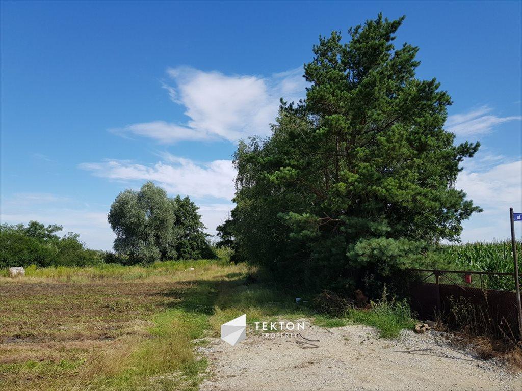 Działka rolna na sprzedaż Mokronos Dolny, Morelowa  3000m2 Foto 10