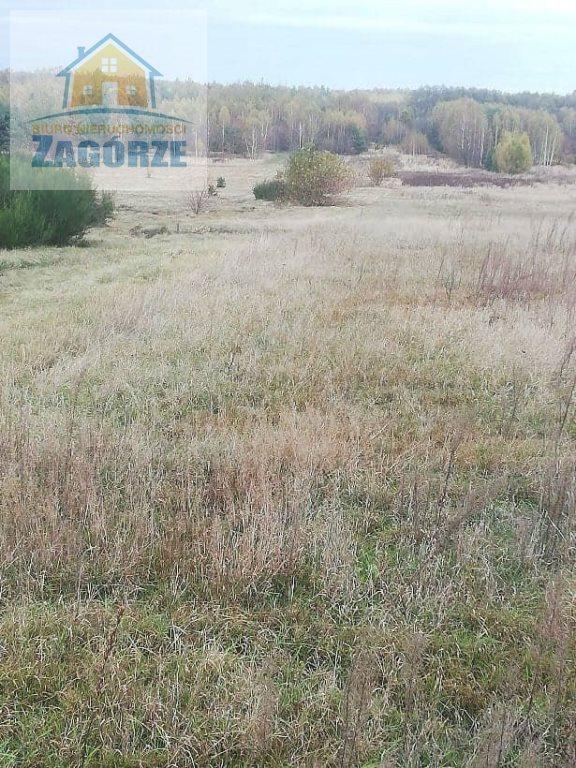 Działka budowlana na sprzedaż Dąbrowa Zielona, Radomszczańska  8400m2 Foto 3