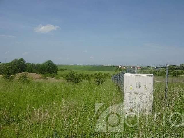 Działka rolna na sprzedaż Siadło Dolne  15000m2 Foto 3