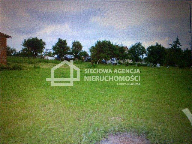Działka budowlana na sprzedaż Krępa Kaszubska  5000m2 Foto 1