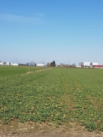 Działka przemysłowo-handlowa na sprzedaż Zalasewo  31700m2 Foto 1