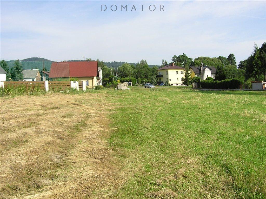 Działka budowlana na sprzedaż Buczkowice  2796m2 Foto 2