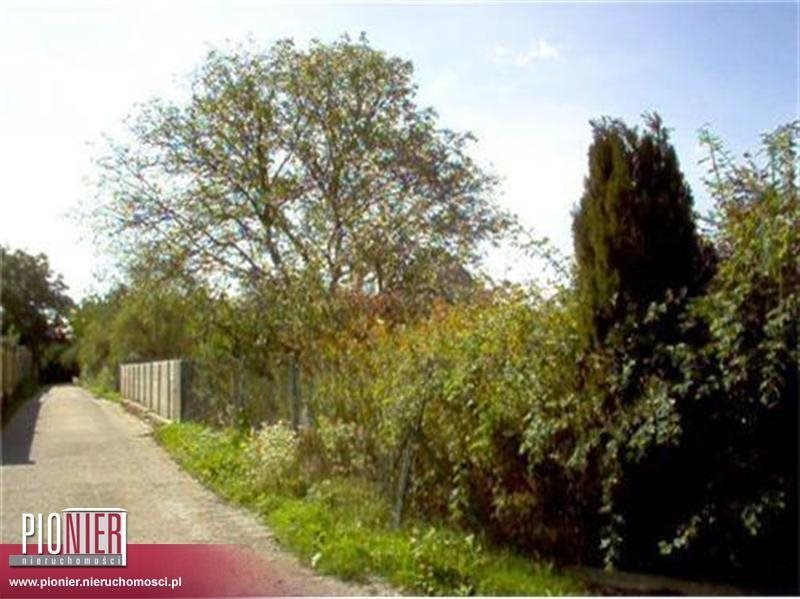 Działka rolna na sprzedaż Szczecin, Gumieńce  5246m2 Foto 1