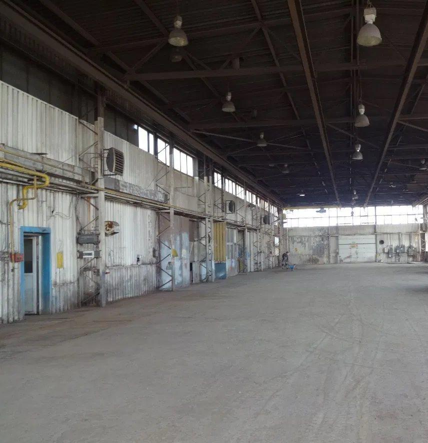 Lokal użytkowy na wynajem Sosnowiec, Śródmieście  1258m2 Foto 1