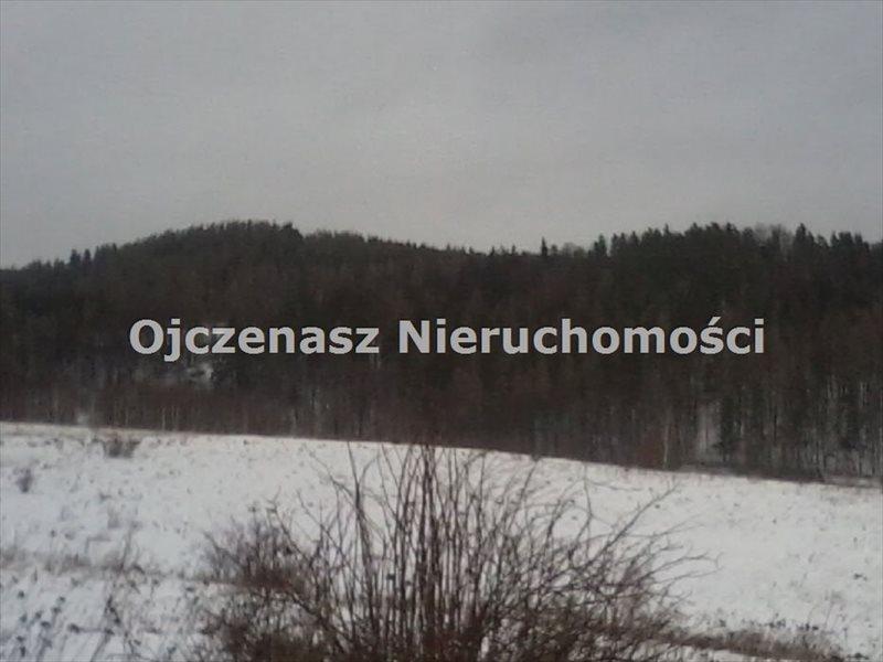 Działka budowlana na sprzedaż Wojcieszyce  49000m2 Foto 2