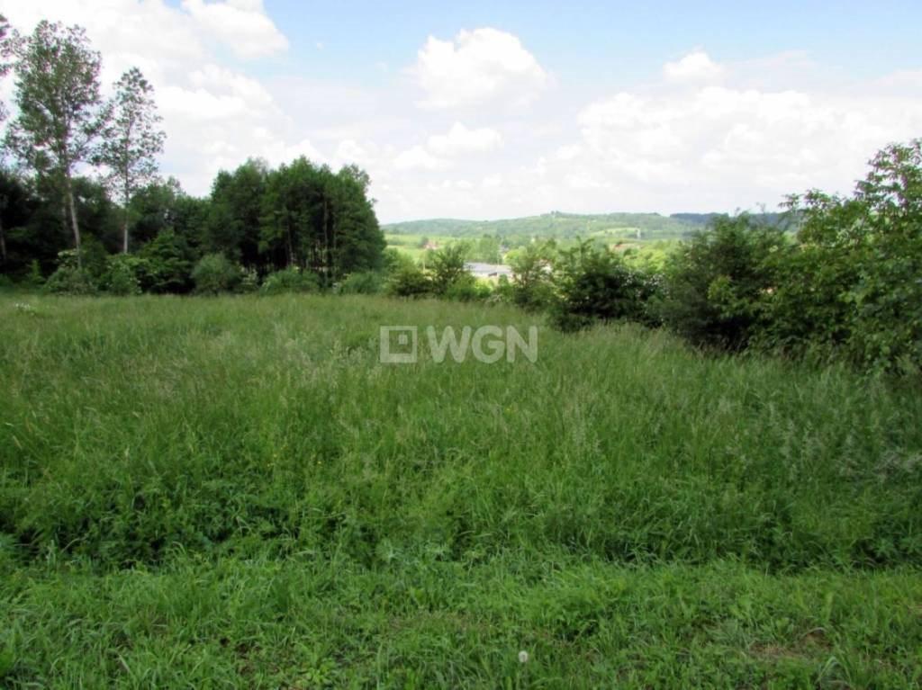 Działka budowlana na sprzedaż Nowy Borek, Nowy Borek, Nowy Borek  7836m2 Foto 4