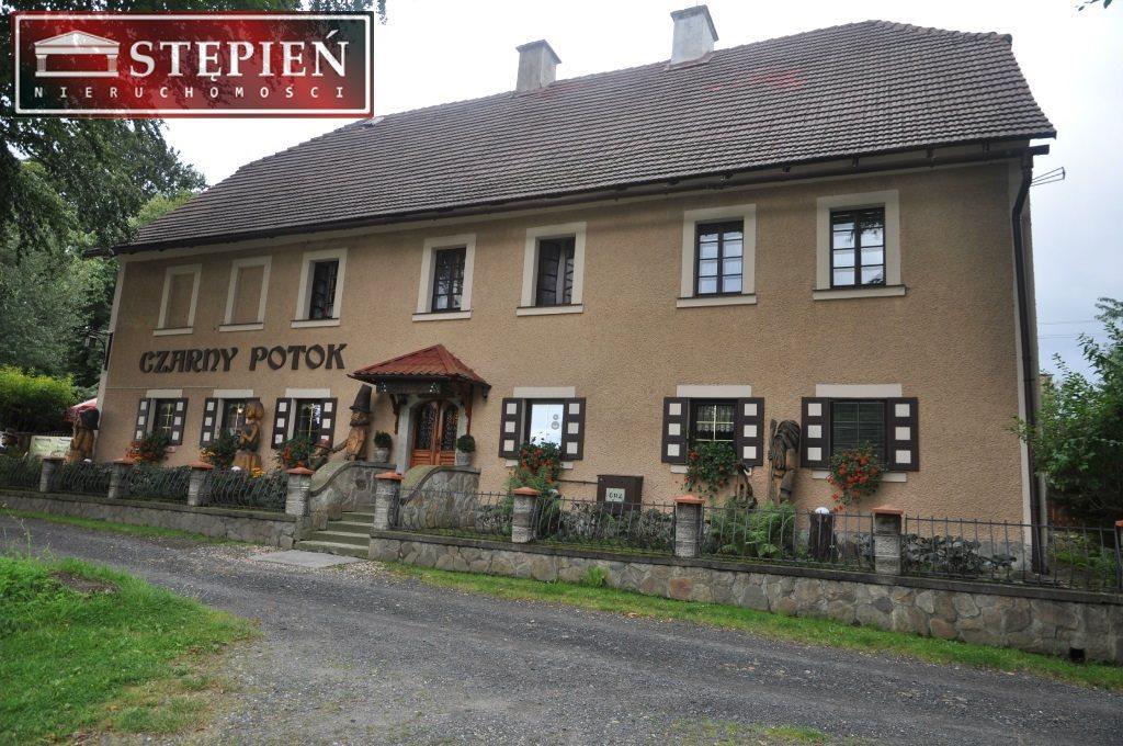 Lokal użytkowy na sprzedaż Świeradów-Zdrój, Czerniawa  420m2 Foto 1