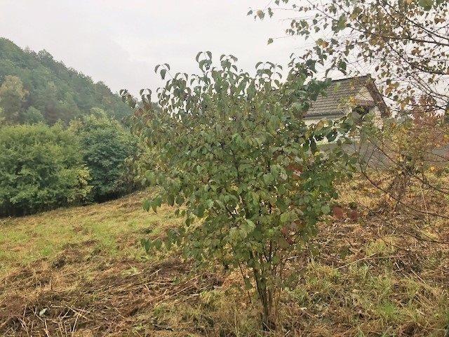 Działka budowlana na sprzedaż Smardzowice  1521m2 Foto 3