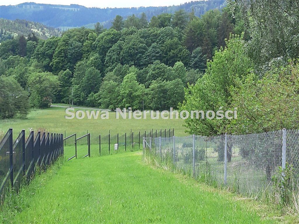 Działka inna na sprzedaż Ludwikowice Kłodzkie  1369m2 Foto 2