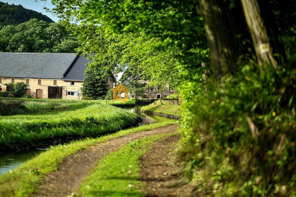 Lokal użytkowy na sprzedaż Sędziszowa  1571m2 Foto 7