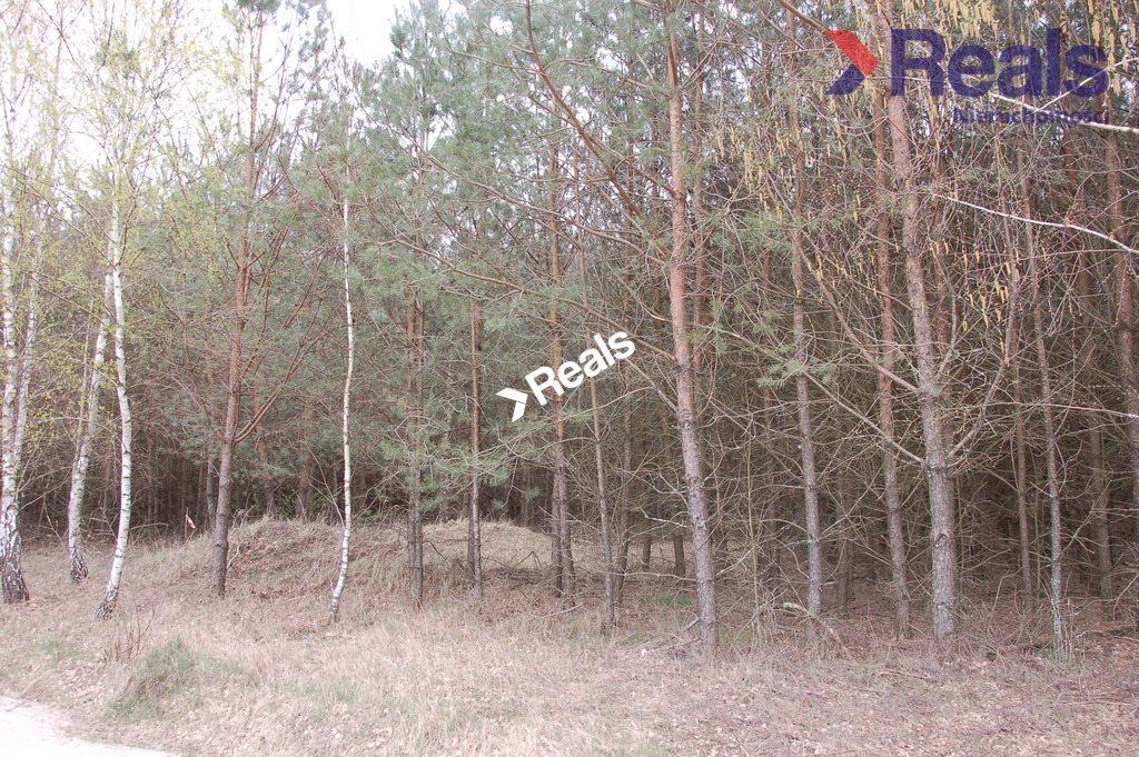Działka leśna na sprzedaż Drzonowo Wałeckie  95000m2 Foto 1