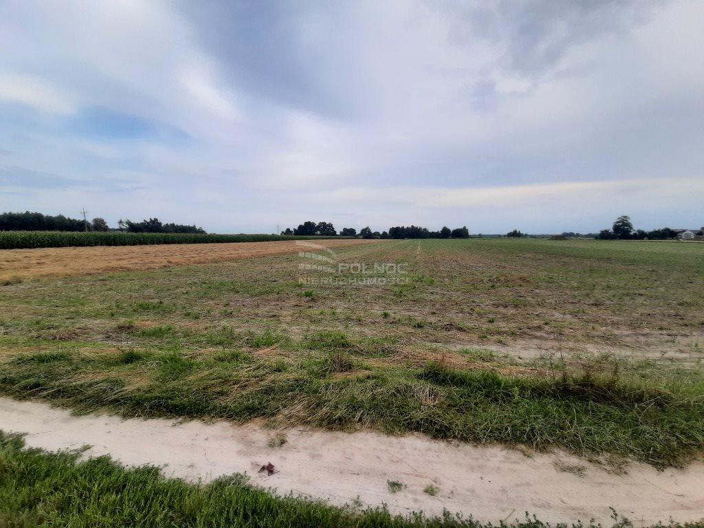 Działka rolna na sprzedaż Żurawieniec  22500m2 Foto 5