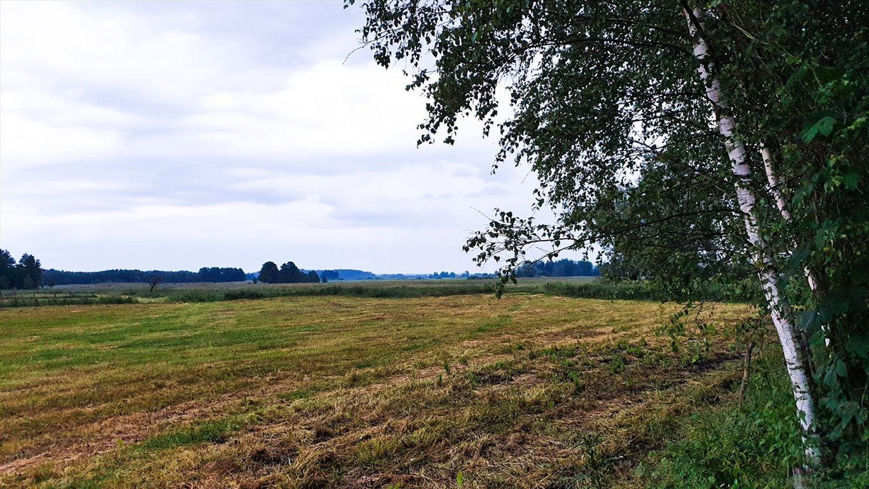 Działka siedliskowa na sprzedaż Grzegorze  14000m2 Foto 7