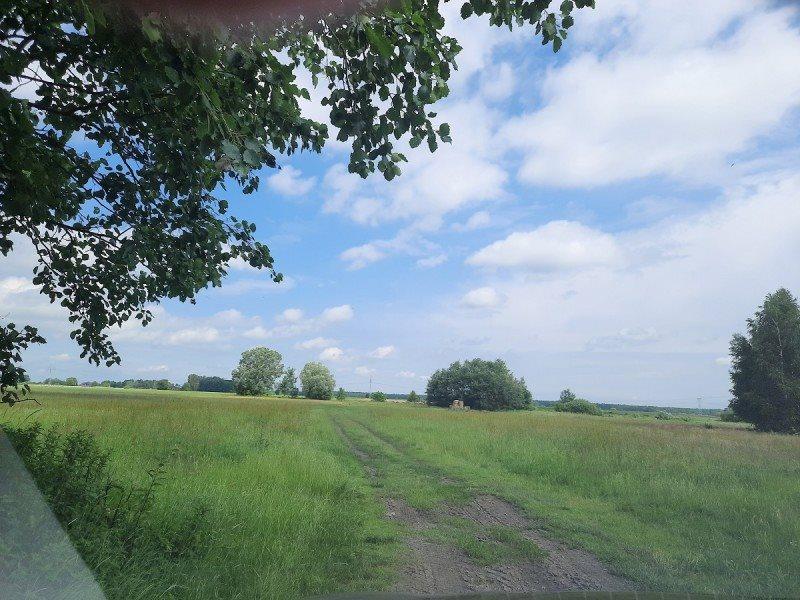 Działka rolna na sprzedaż Kampinos, Wola Pasikońska  3000m2 Foto 1