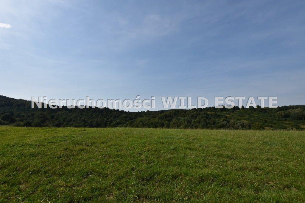 Działka rolna na sprzedaż Baligród, Zahoczewie  180184m2 Foto 4