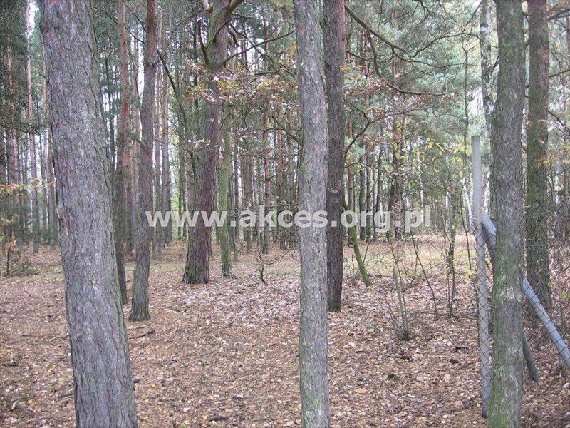 Działka leśna na sprzedaż Kędzierówka  2800m2 Foto 1