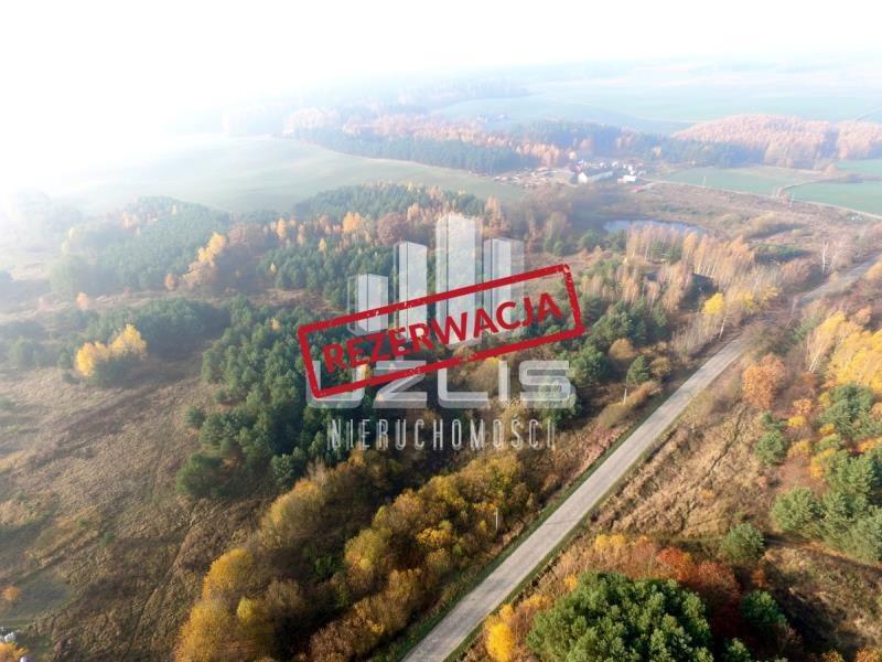 Działka rolna na sprzedaż Tczew  40600m2 Foto 1