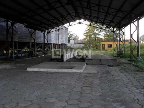 Lokal użytkowy na sprzedaż Rudna, Krochmalna  9478m2 Foto 4