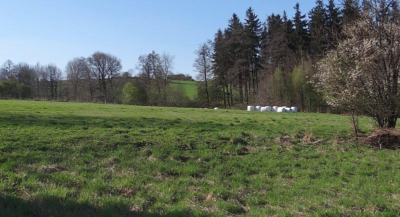 Działka siedliskowa na sprzedaż Międzyświeć  12100m2 Foto 2