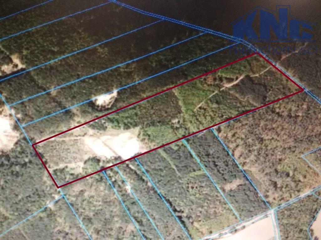 Działka leśna na sprzedaż Osówiec Szlachecki  68600m2 Foto 2