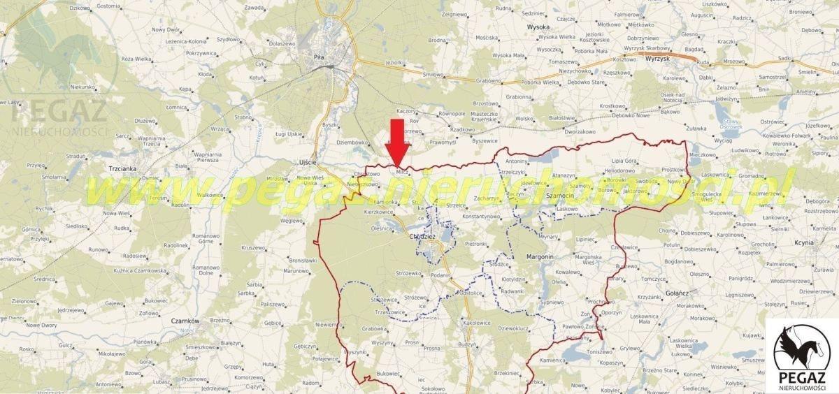 Działka rolna na sprzedaż Milcz, Holna / Zajęcza  6175m2 Foto 3