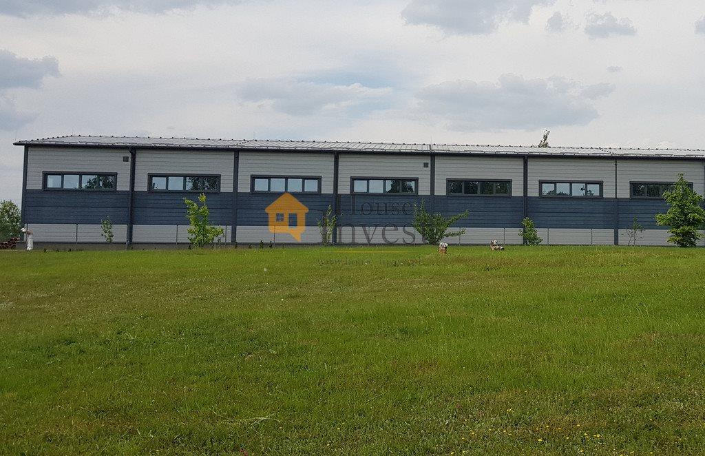 Lokal użytkowy na wynajem Legnica  1066m2 Foto 3