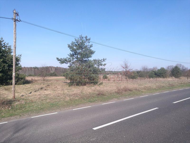 Działka budowlana na sprzedaż Nowa Wieś  3007m2 Foto 5