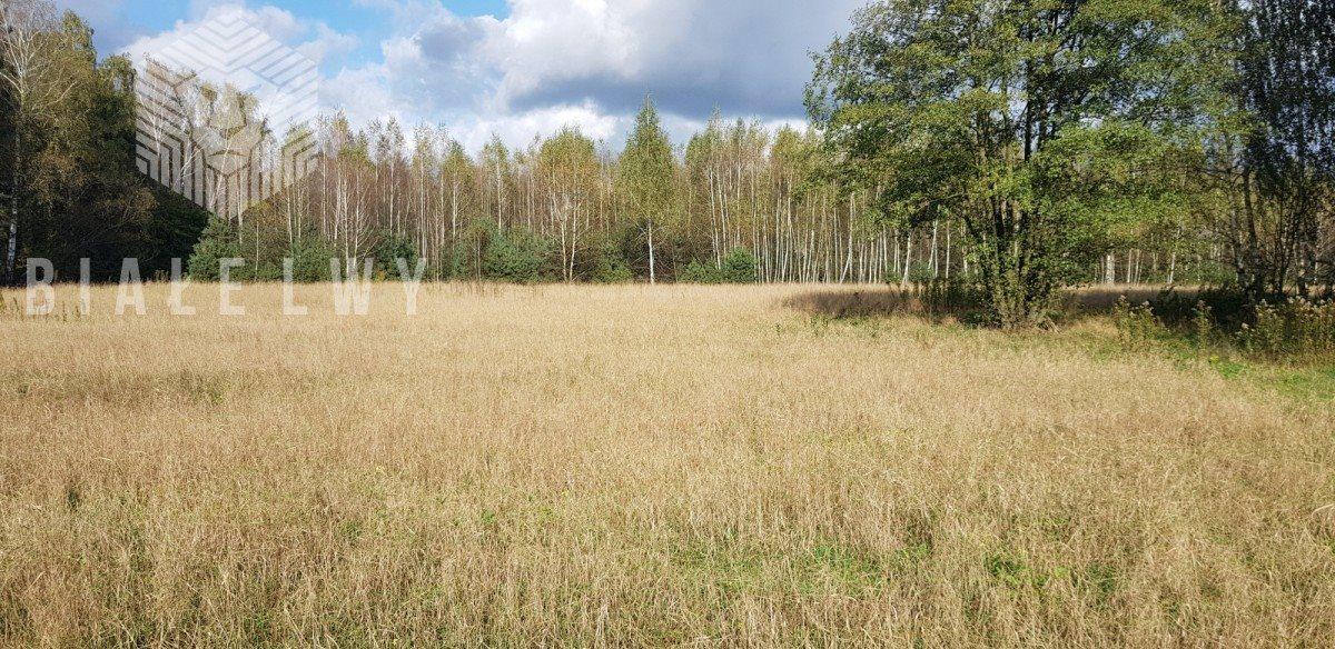 Działka rolna na sprzedaż Sułkowice  102100m2 Foto 5