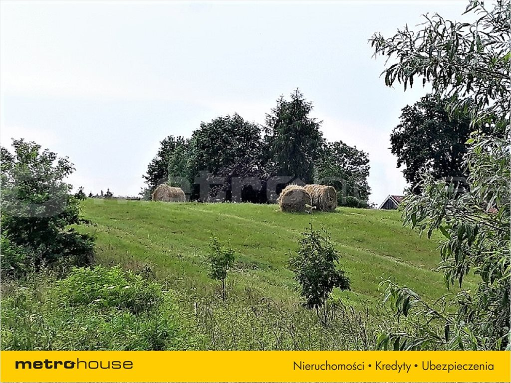 Działka rolna na sprzedaż Mątki, Jonkowo  9124m2 Foto 2