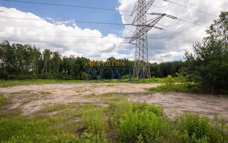 Działka budowlana na sprzedaż Prace Duże, Arakowa  6080m2 Foto 8