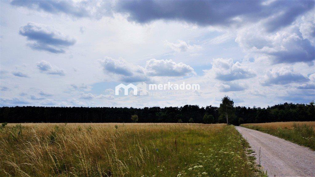 Działka rolna na sprzedaż Grzybowo  21116m2 Foto 3