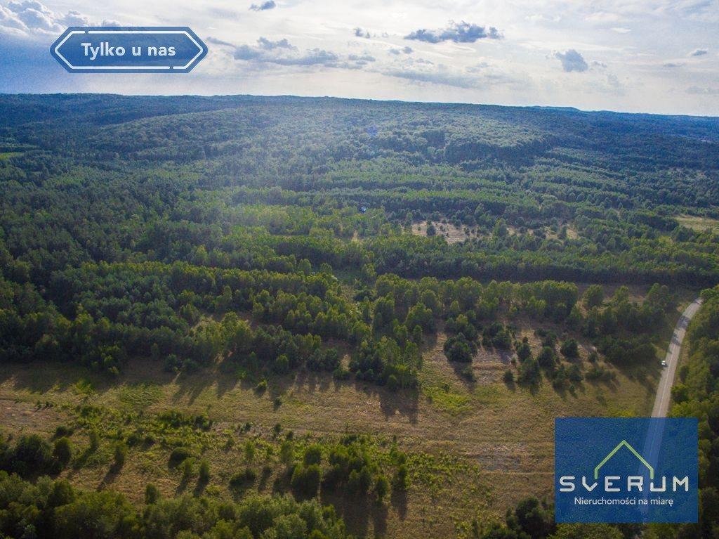 Działka leśna na sprzedaż Złoty Potok, Partyzantów  7420m2 Foto 5