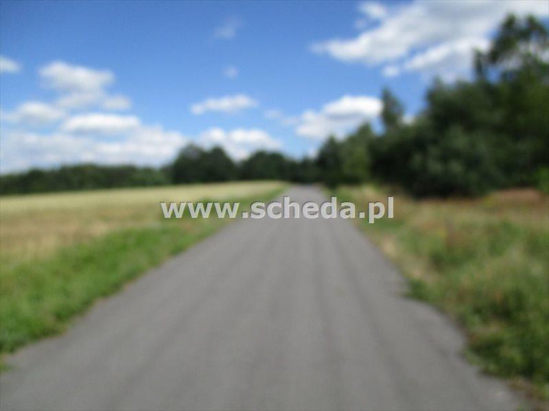 Działka inna na sprzedaż Dąbrowa Zielona  1000m2 Foto 3