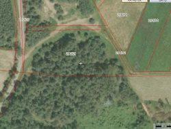 Działka leśna na sprzedaż Skroda Wielka  9200m2 Foto 9
