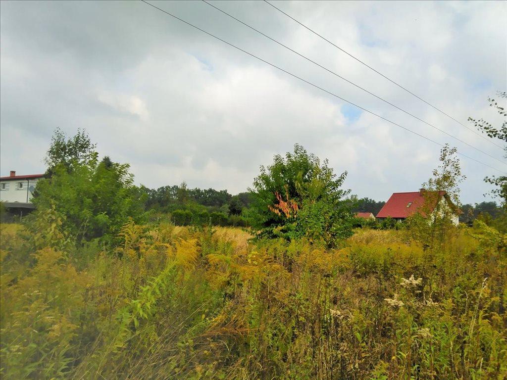Działka budowlana na sprzedaż Kotowice, Święta Katarzyna  1380m2 Foto 6