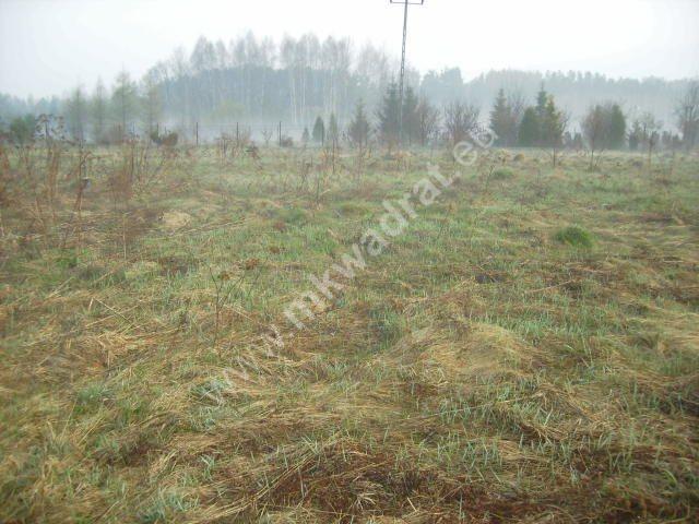 Działka budowlana na sprzedaż Żelechów  1000m2 Foto 2