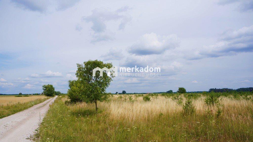 Działka rolna na sprzedaż Grzybowo  21116m2 Foto 1