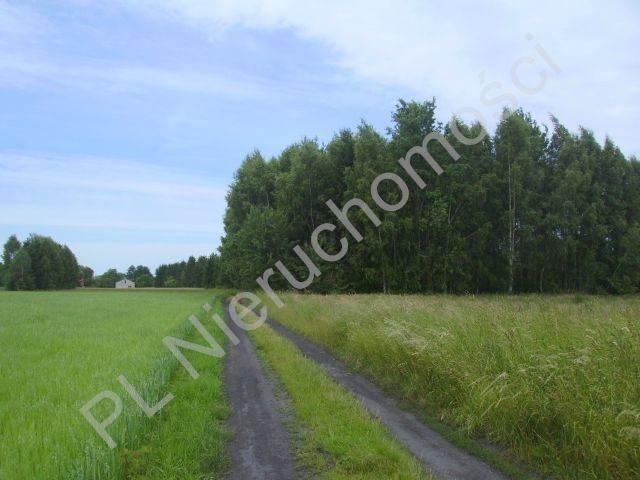 Działka rolna na sprzedaż Holendry Baranowskie  28400m2 Foto 1