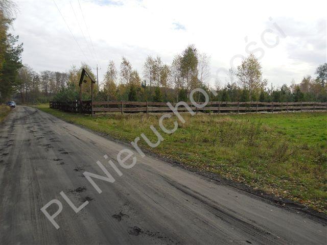 Działka leśna na sprzedaż Wólka Wybraniecka  12500m2 Foto 5