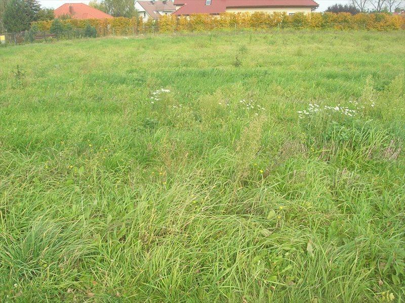 Działka budowlana na sprzedaż Bielany Wrocławskie  943m2 Foto 1