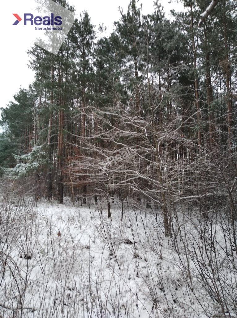 Działka leśna z prawem budowy na sprzedaż Warszawa, Wawer, Anin  3734m2 Foto 6