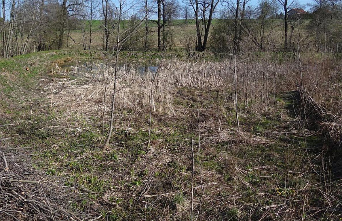 Działka siedliskowa na sprzedaż Międzyświeć  12100m2 Foto 6