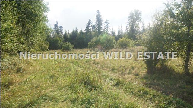 Działka rolna na sprzedaż Lesko, Huzele  88812m2 Foto 8