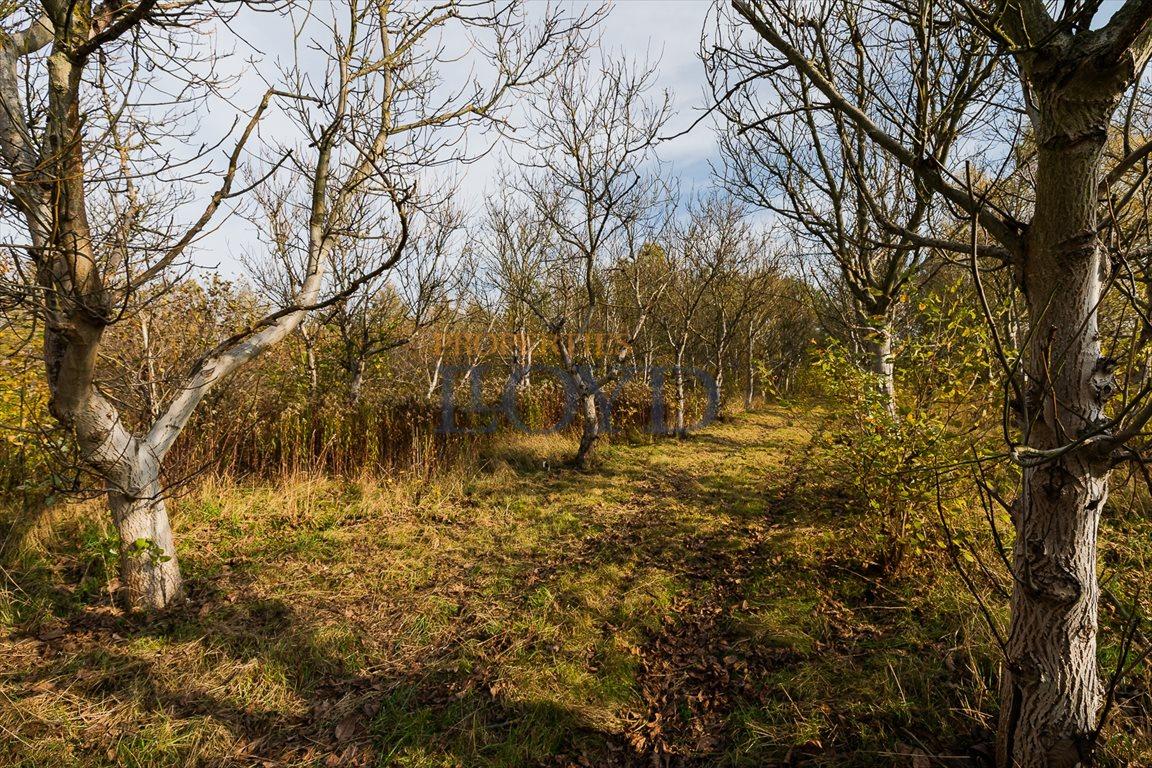 Działka rolna na sprzedaż Nowy Prażmów, Główna  33600m2 Foto 1