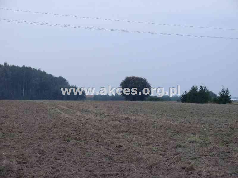 Działka budowlana na sprzedaż Wola Mrokowska  10000m2 Foto 3