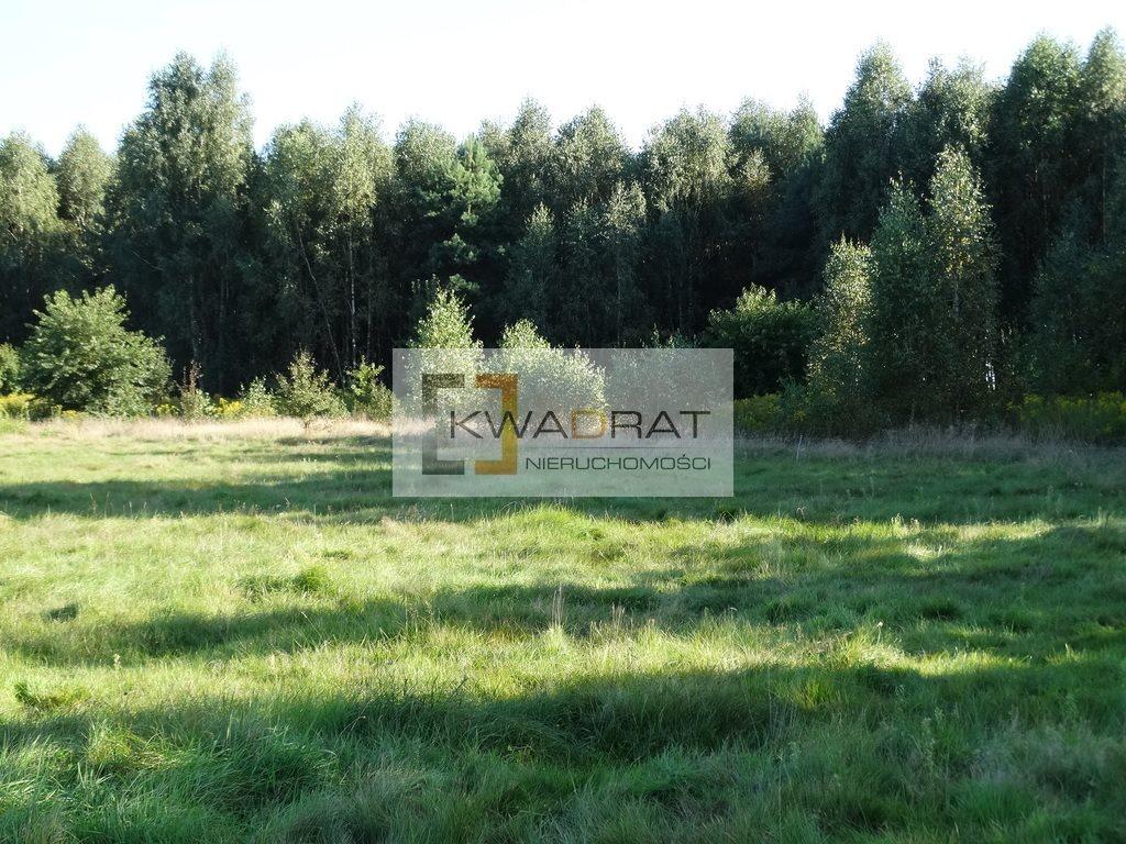 Działka rolna na sprzedaż Brzozowica  36300m2 Foto 2