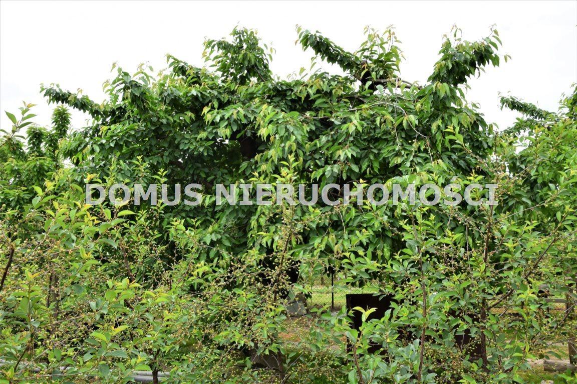 Dom na sprzedaż Sadkowice  120m2 Foto 6