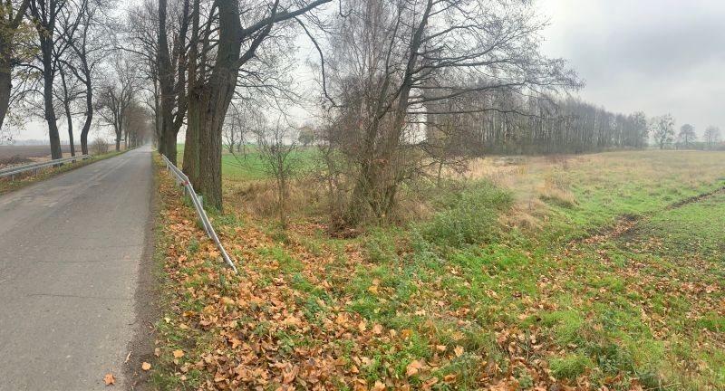 Działka leśna na sprzedaż Pyrzyce, WOJCIECHA BARTOSZA GŁOWACKIEGO  15700m2 Foto 3