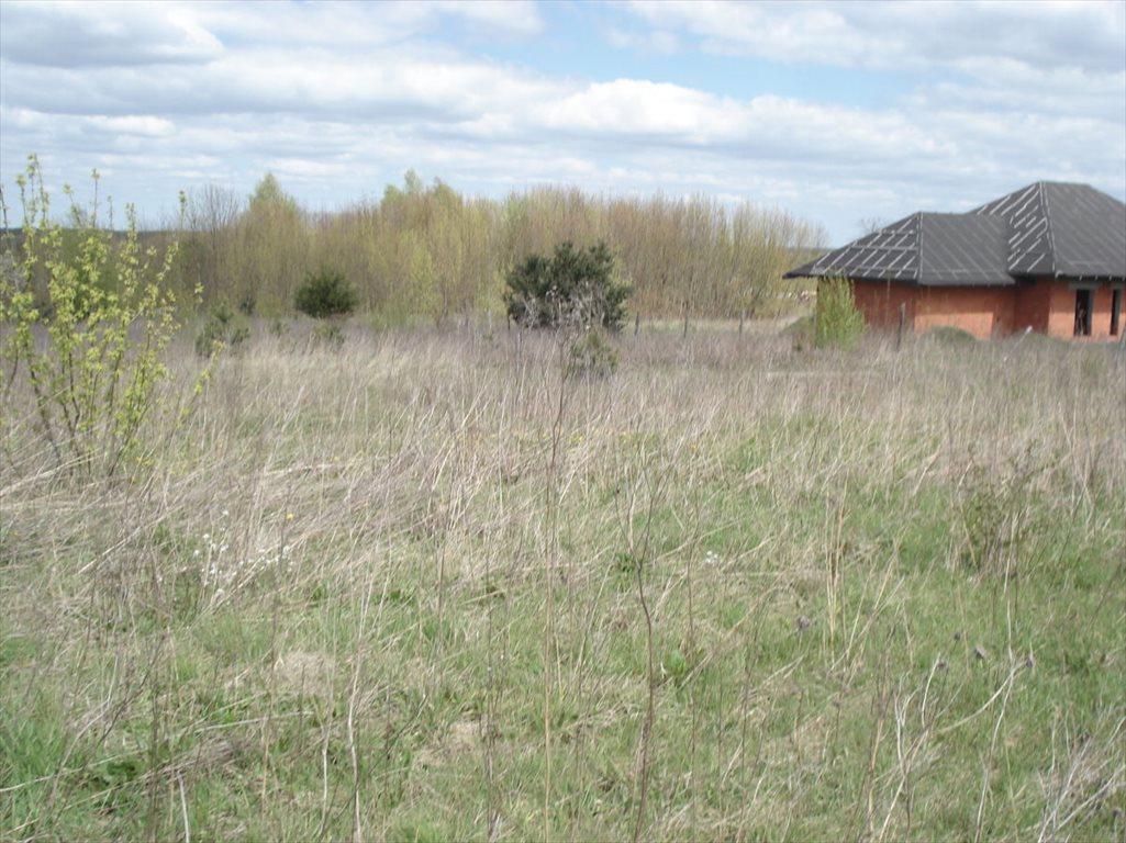 Działka budowlana na sprzedaż Wierzbica, Pułtuska  7321m2 Foto 5